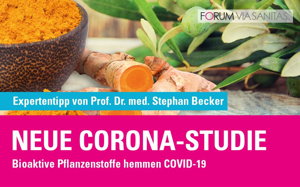 Neue Corona-Studie: Bioaktive Pflanzenstoffe hemmen COVID-19