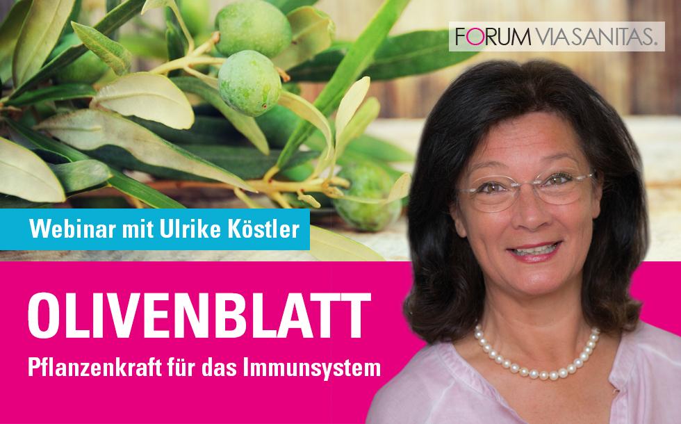Olivenblatt, Webinar mit Ulrike Köstler