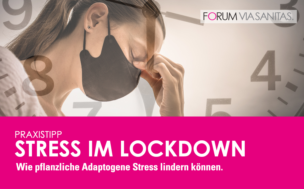 Stress im Lockdown